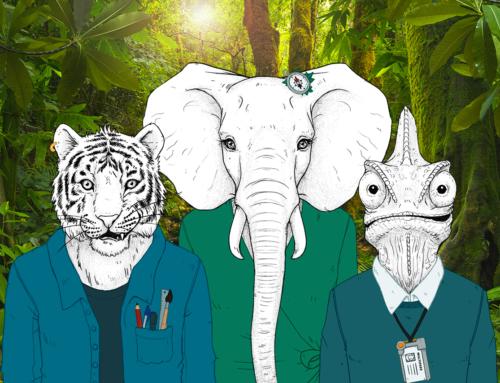 Éléphant, Tigre et Caméléon au cœur de la jungle du Digital Learning