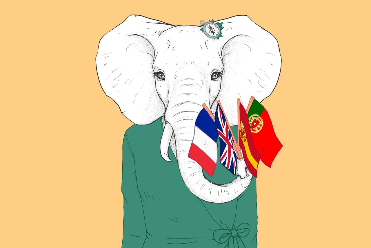 Une éléphante avec des drapeaux de plusieurs pays