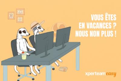 dessins de 2 suricates assis côte à côte devant 2 ordinateurs