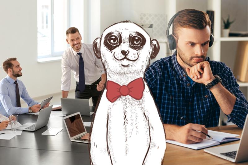 3 hommes qui travaillent dans un bureau et le dessin d'un suricat